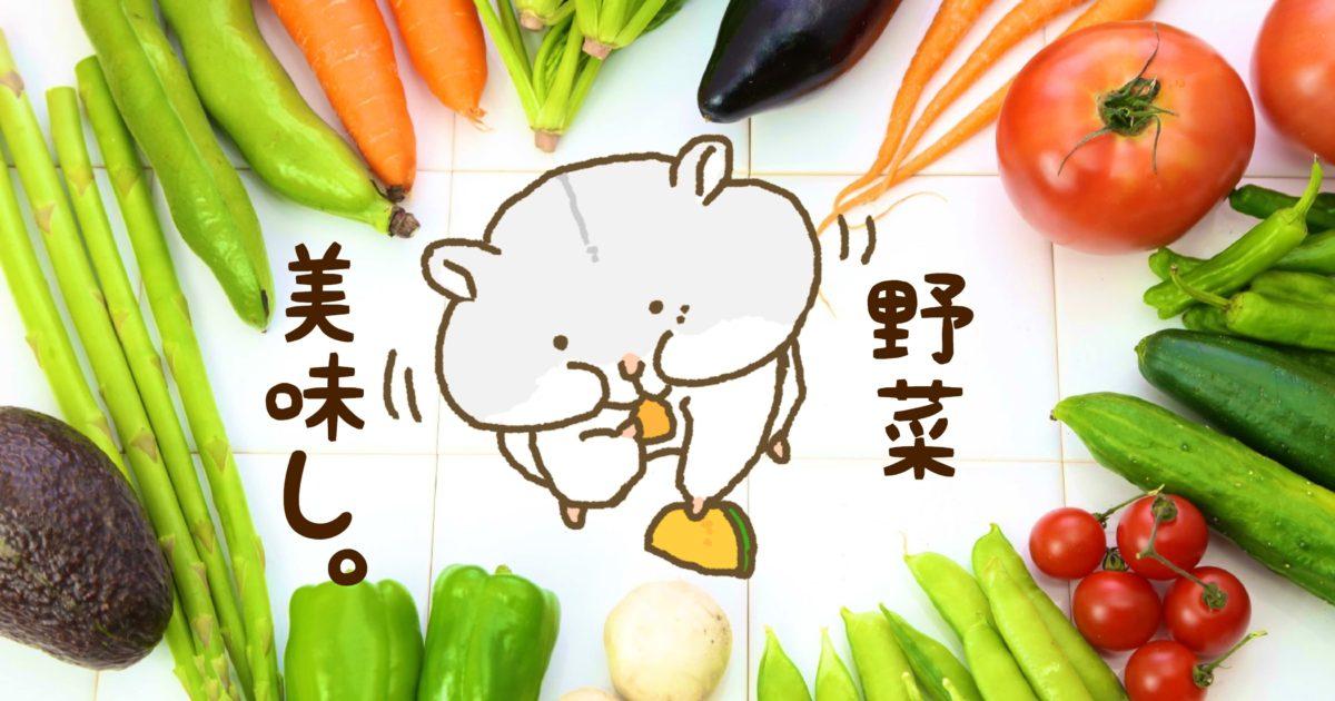 犬 が 食べ られる 野菜