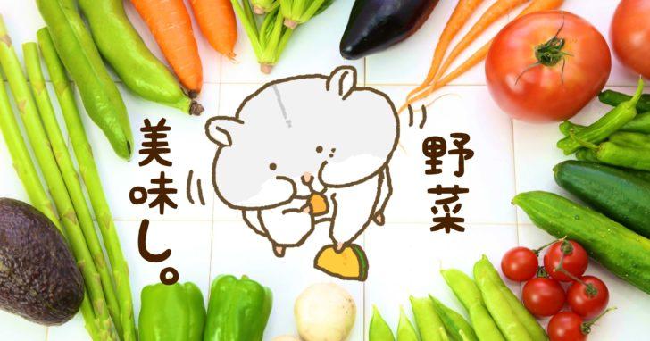 野菜を食べるハムスター