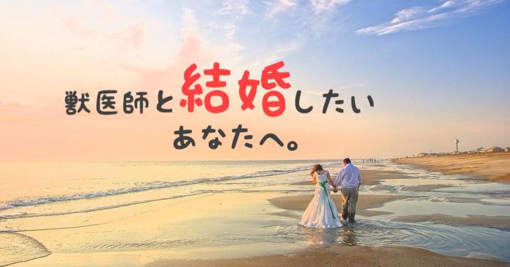 獣医, 結婚, 婚活